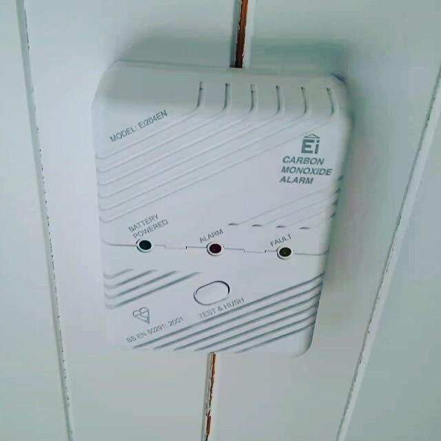 Carbon monoxide alarm test